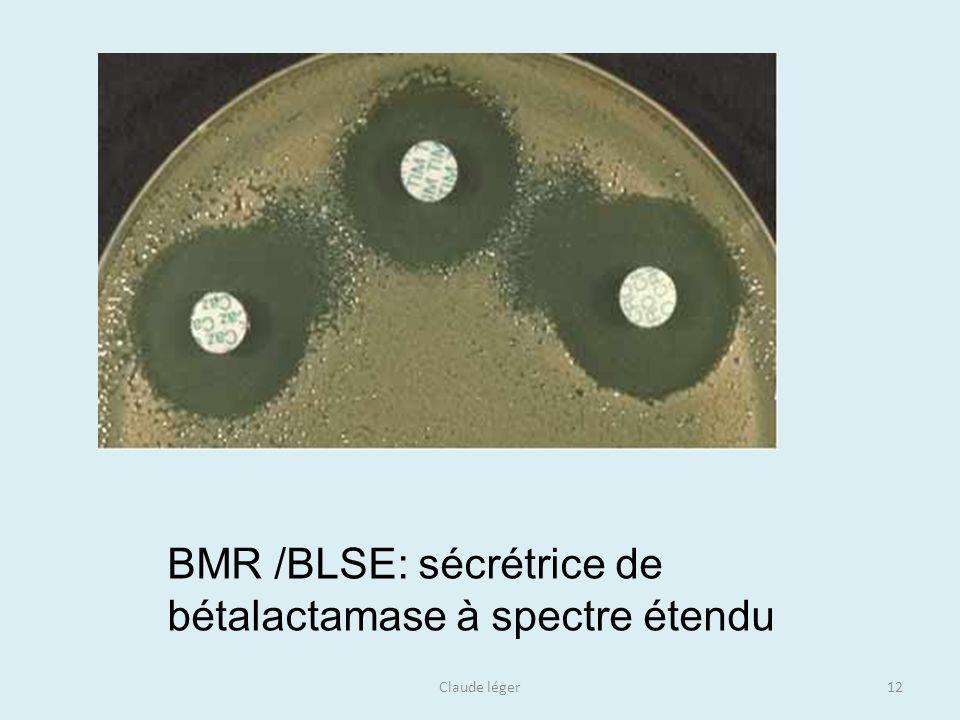 Claude léger12 BMR /BLSE: sécrétrice de bétalactamase à spectre étendu