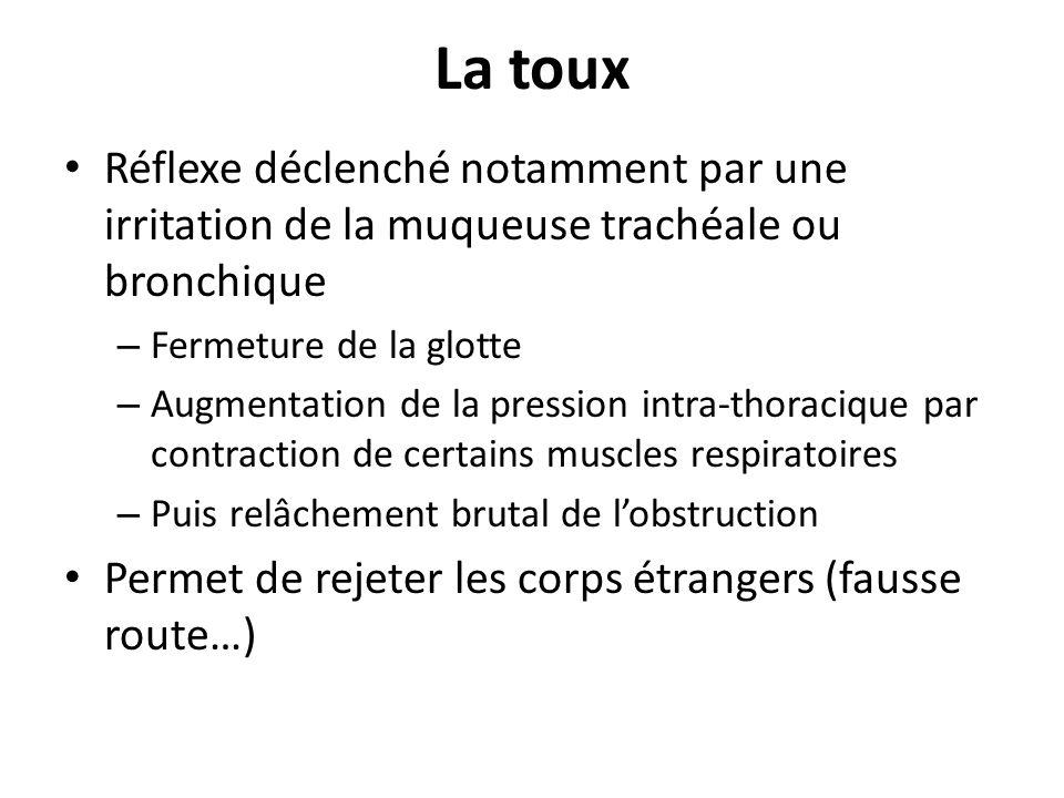 La toux Réflexe déclenché notamment par une irritation de la muqueuse trachéale ou bronchique – Fermeture de la glotte – Augmentation de la pression i