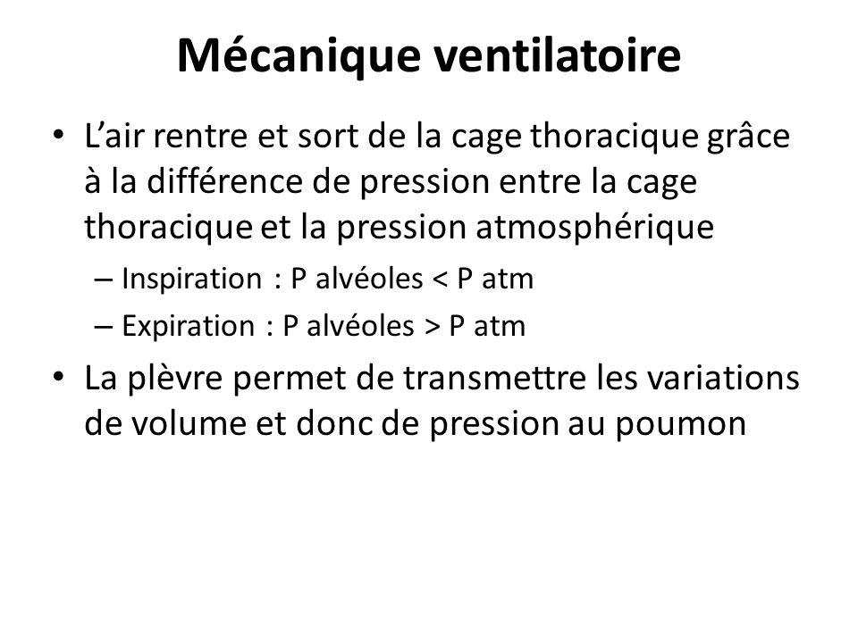 Mécanique ventilatoire Lair rentre et sort de la cage thoracique grâce à la différence de pression entre la cage thoracique et la pression atmosphériq