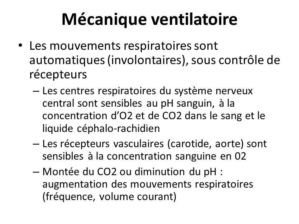 Mécanique ventilatoire Les mouvements respiratoires sont automatiques (involontaires), sous contrôle de récepteurs – Les centres respiratoires du syst