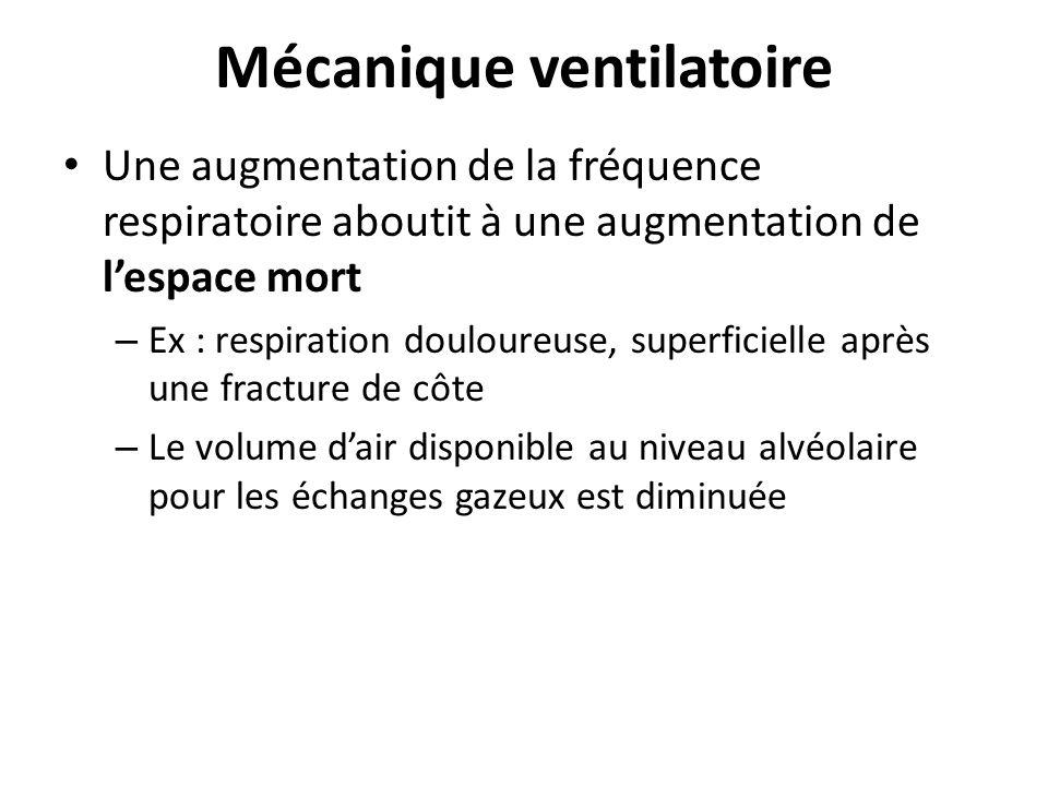 Mécanique ventilatoire Une augmentation de la fréquence respiratoire aboutit à une augmentation de lespace mort – Ex : respiration douloureuse, superf