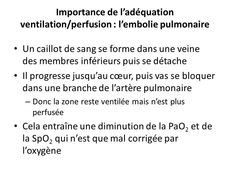 Importance de ladéquation ventilation/perfusion : lembolie pulmonaire Un caillot de sang se forme dans une veine des membres inférieurs puis se détach