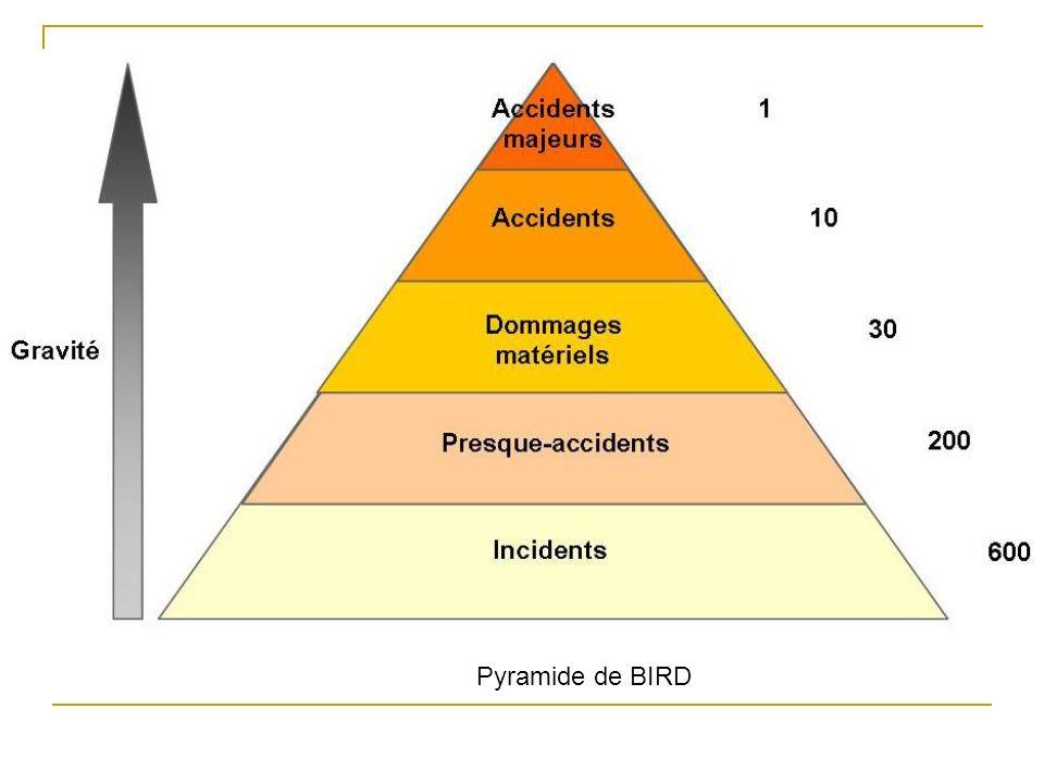 Pyramide de BIRD