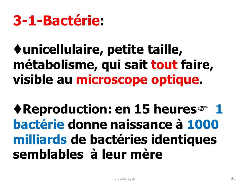 31 3-1-Bactérie: unicellulaire, petite taille, métabolisme, qui sait tout faire, visible au microscope optique. Reproduction: en 15 heures 1 bactérie