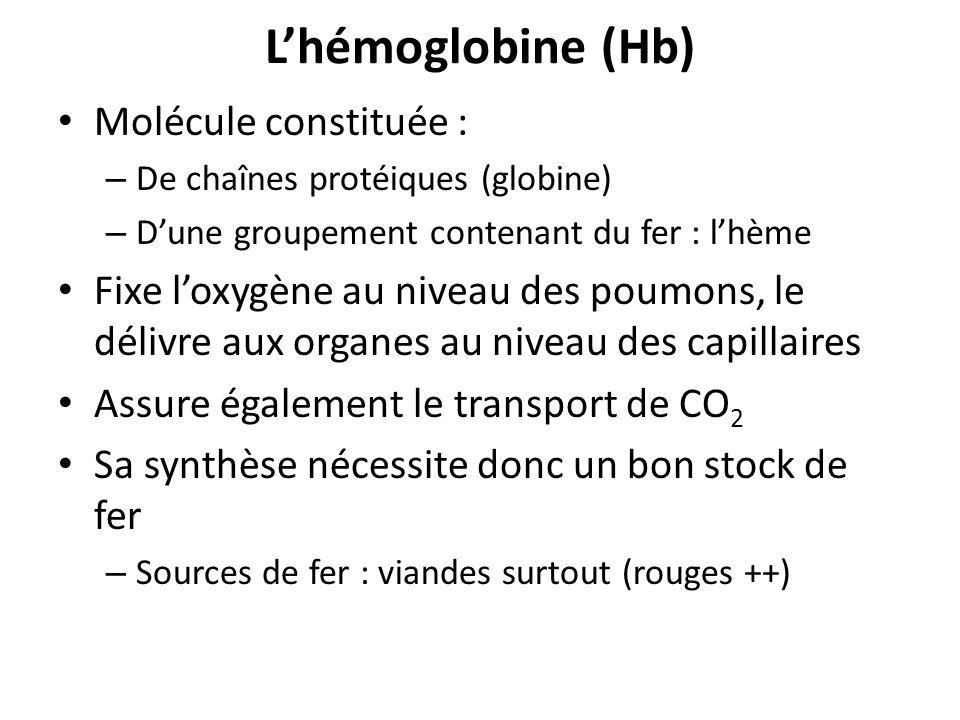 Lhémoglobine (Hb) Molécule constituée : – De chaînes protéiques (globine) – Dune groupement contenant du fer : lhème Fixe loxygène au niveau des poumo