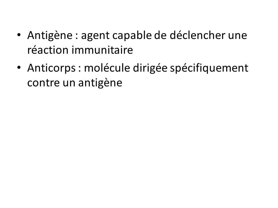 Antigène : agent capable de déclencher une réaction immunitaire Anticorps : molécule dirigée spécifiquement contre un antigène