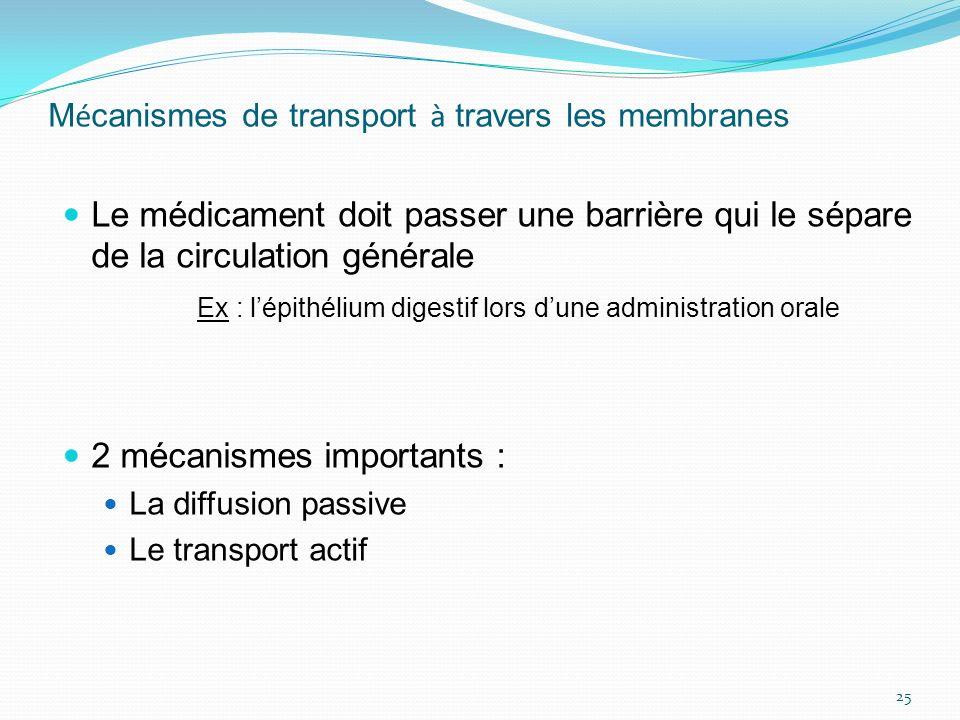 M é canismes de transport à travers les membranes Le médicament doit passer une barrière qui le sépare de la circulation générale Ex : lépithélium dig