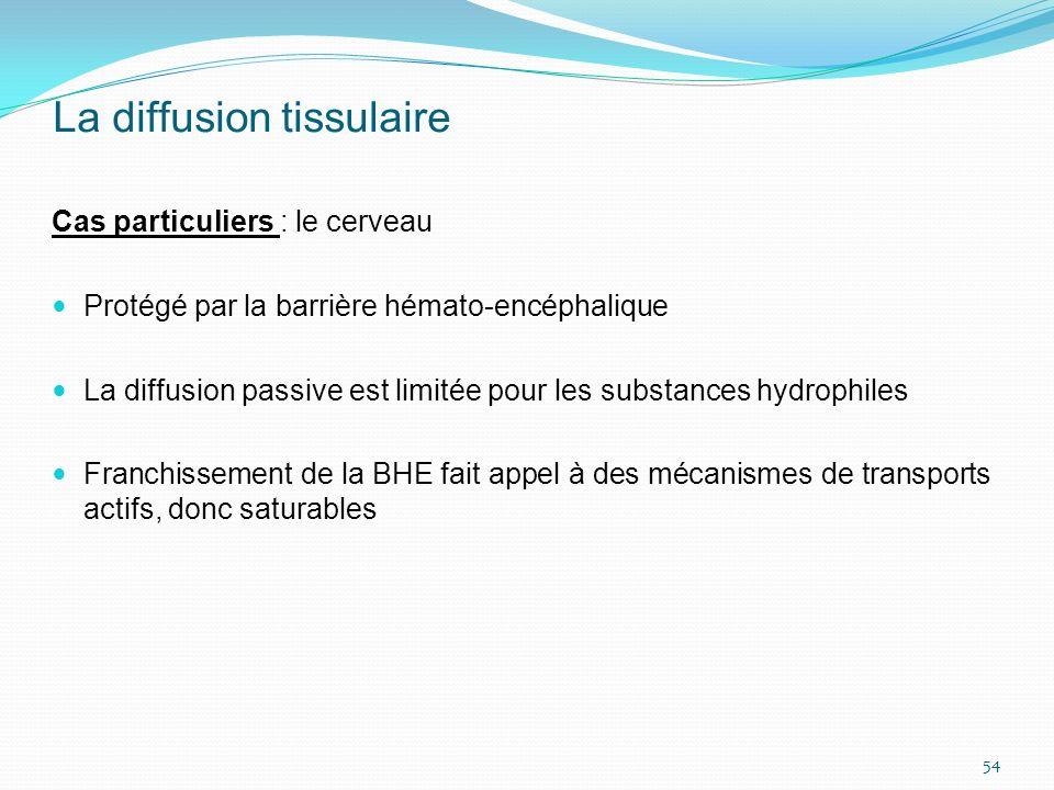 La diffusion tissulaire Cas particuliers : le cerveau Protégé par la barrière hémato-encéphalique La diffusion passive est limitée pour les substances