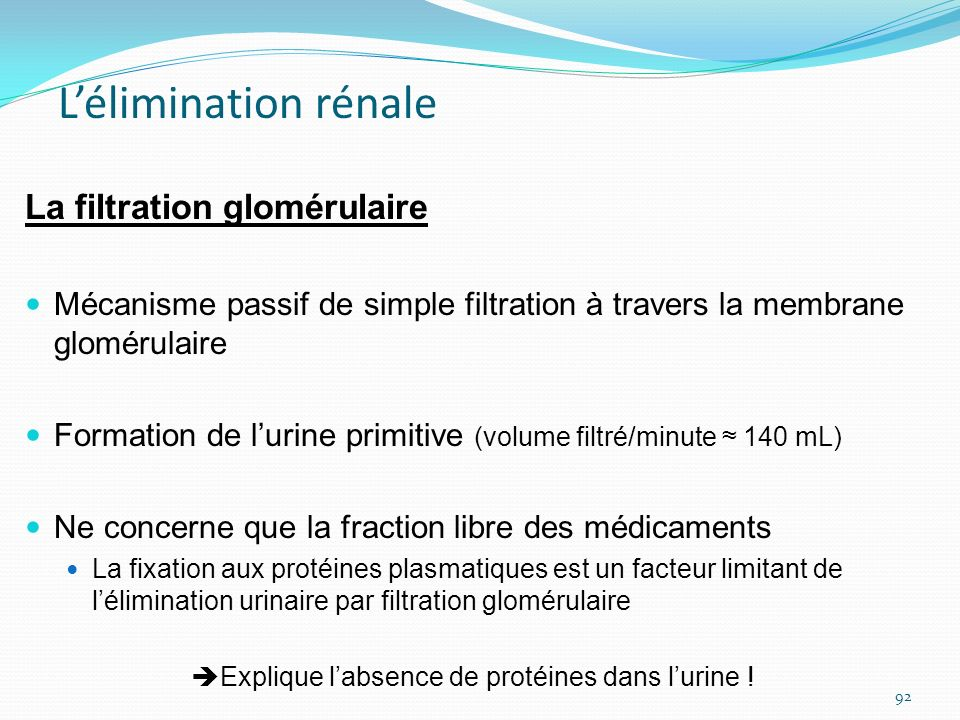 Lélimination rénale La filtration glomérulaire Mécanisme passif de simple filtration à travers la membrane glomérulaire Formation de lurine primitive