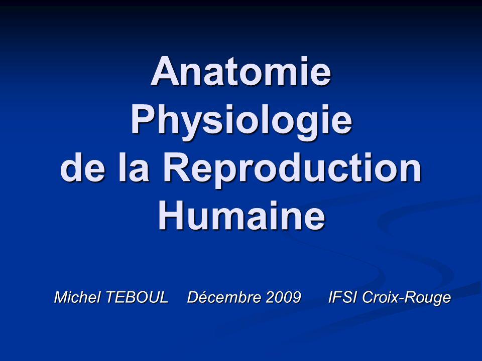 Anatomie Physiologie de la Reproduction Humaine Michel TEBOUL Décembre 2009 IFSI Croix-Rouge