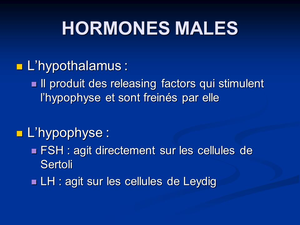 HORMONES MALES Lhypothalamus : Lhypothalamus : Il produit des releasing factors qui stimulent lhypophyse et sont freinés par elle Il produit des relea