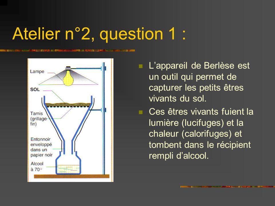 Atelier n°2, question 1 : Lappareil de Berlèse est un outil qui permet de capturer les petits êtres vivants du sol. Ces êtres vivants fuient la lumièr
