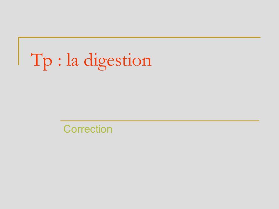 Tp : la digestion Correction