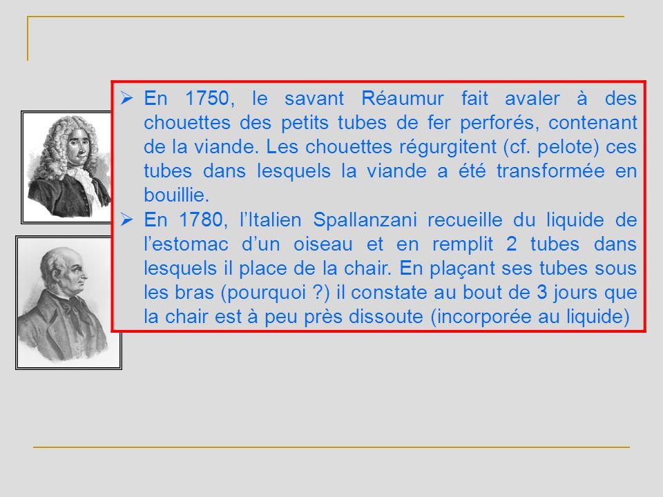 En 1750, le savant Réaumur fait avaler à des chouettes des petits tubes de fer perforés, contenant de la viande. Les chouettes régurgitent (cf. pelote