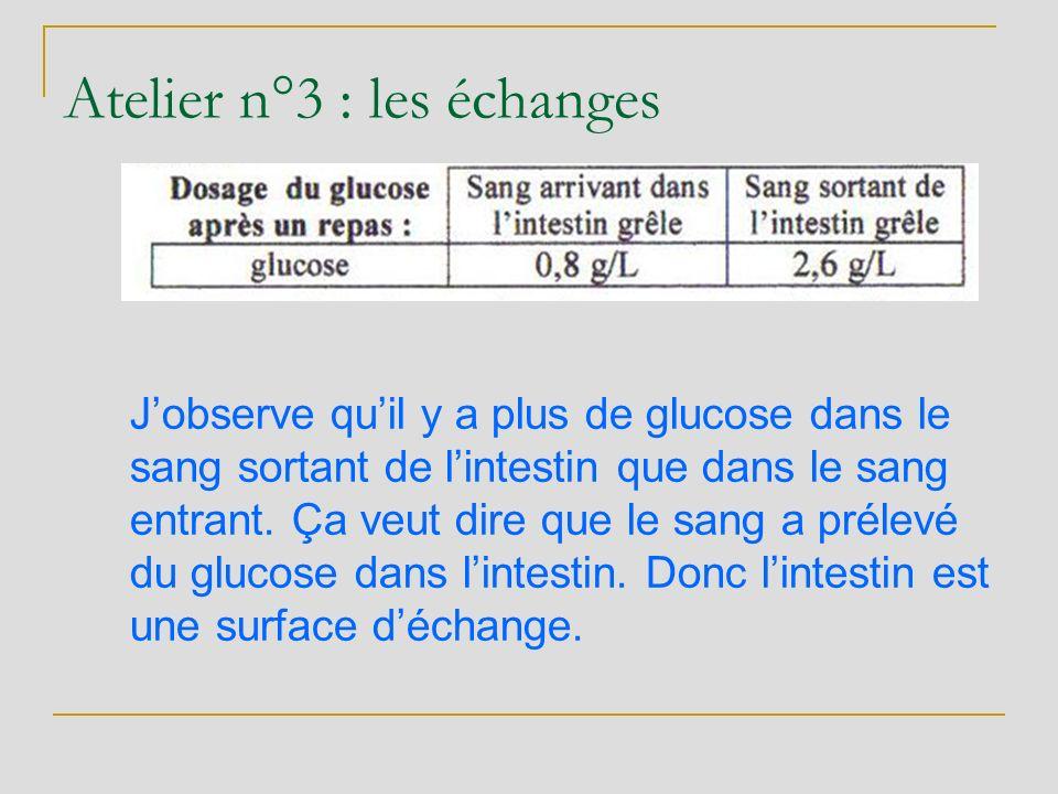 Jobserve quil y a plus de glucose dans le sang sortant de lintestin que dans le sang entrant. Ça veut dire que le sang a prélevé du glucose dans linte