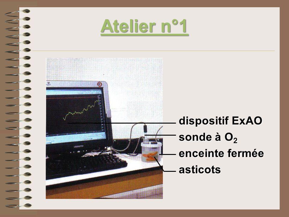 2)Variation de la quantité de O2 O2 dans lair en présence dasticots en fonction du temps.