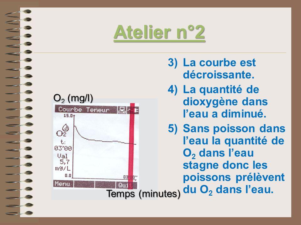 Atelier n°2 3)La courbe est décroissante. 4)La quantité de dioxygène dans leau a diminué. 5)Sans poisson dans leau la quantité de O 2 dans leau stagne
