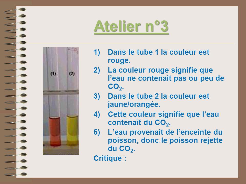 Atelier n°3 1)Dans le tube 1 la couleur est rouge. 2)La couleur rouge signifie que leau ne contenait pas ou peu de CO 2. 3)Dans le tube 2 la couleur e