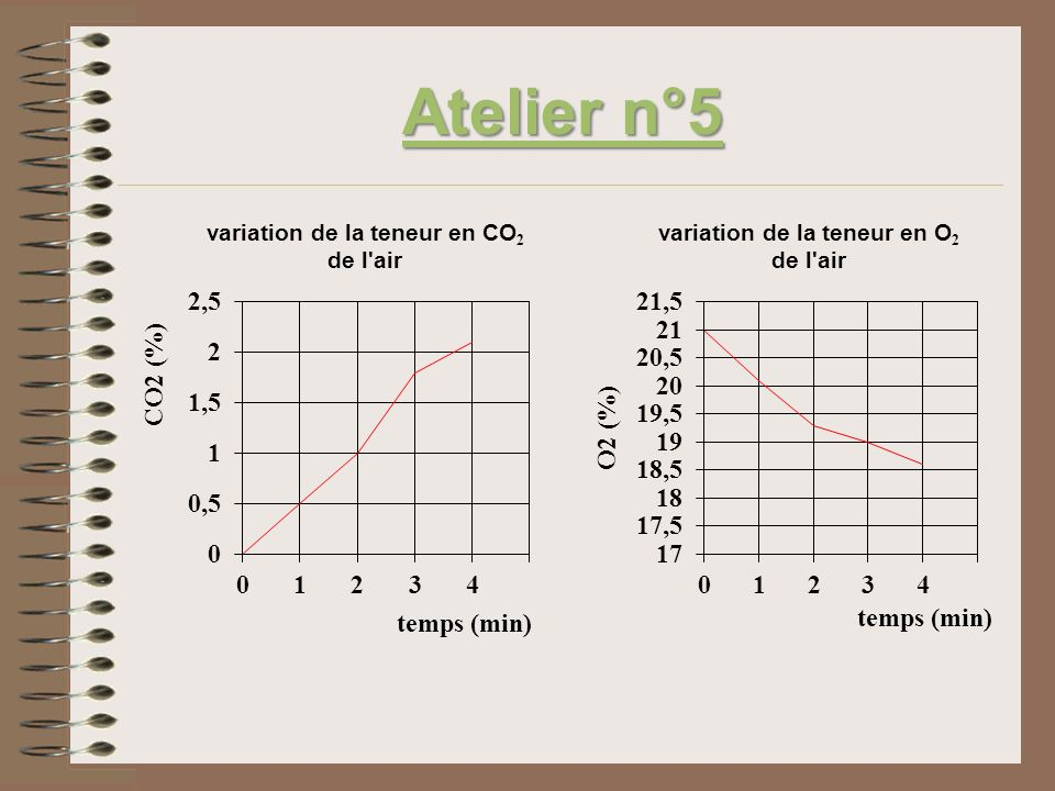 2)Il semble que les asticots rejettent du CO 2 dans lair puisque sa quantité augmente dans lenceinte (courbe croissante).