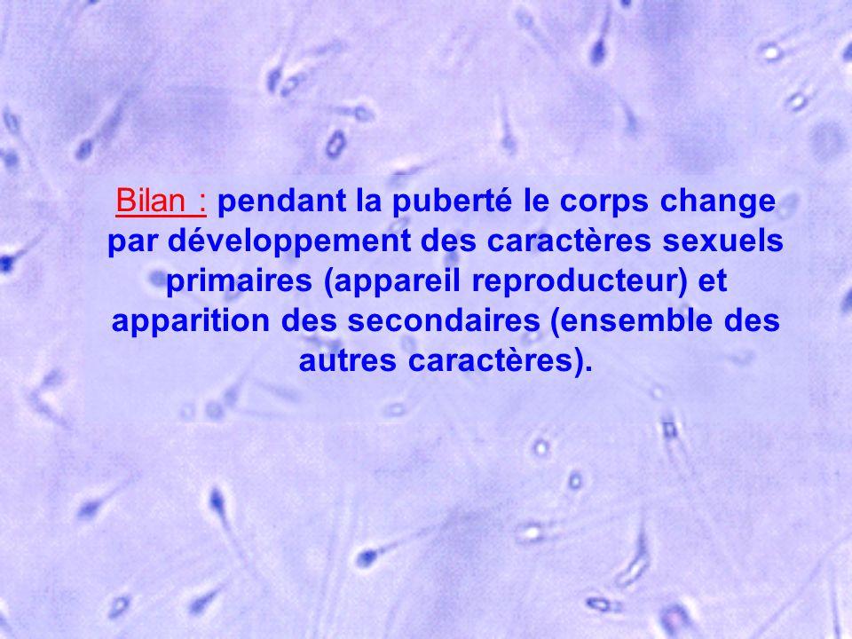 Bilan : pendant la puberté le corps change par développement des caractères sexuels primaires (appareil reproducteur) et apparition des secondaires (e