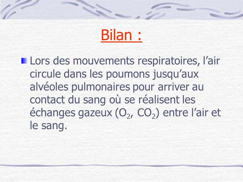 Bilan : Lors des mouvements respiratoires, lair circule dans les poumons jusquaux alvéoles pulmonaires pour arriver au contact du sang où se réalisent