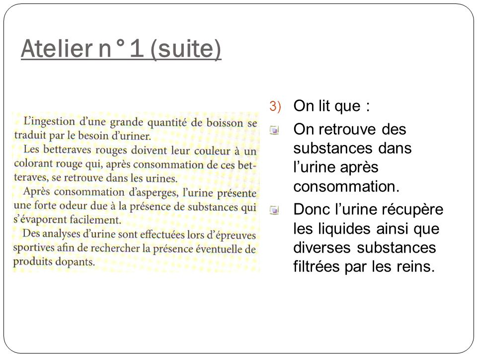 Atelier n°1 (suite) 3) On lit que : On retrouve des substances dans lurine après consommation. Donc lurine récupère les liquides ainsi que diverses su