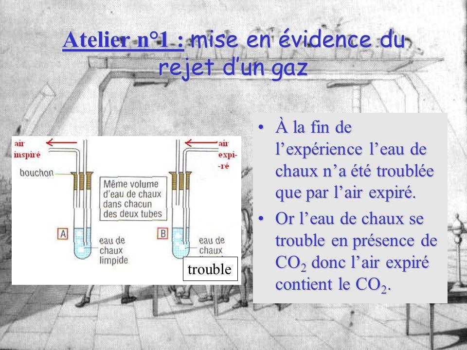 Atelier n°1 : mise en évidence du rejet dun gaz À la fin de lexpérience leau de chaux na été troublée que par lair expiré.À la fin de lexpérience leau