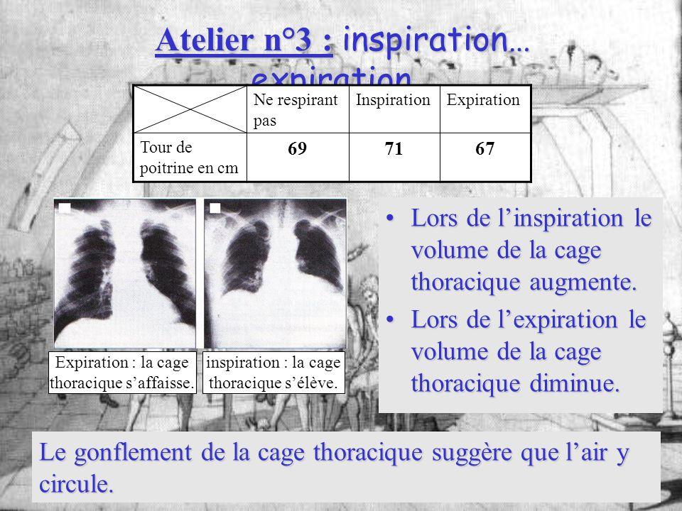 Atelier n°3 : inspiration… expiration… Lors de linspiration le volume de la cage thoracique augmente.Lors de linspiration le volume de la cage thoraci
