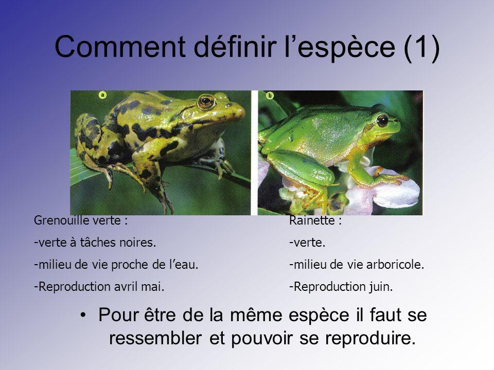 Comment définir lespèce (1) Pour être de la même espèce il faut se ressembler et pouvoir se reproduire. Grenouille verte : -verte à tâches noires. -mi