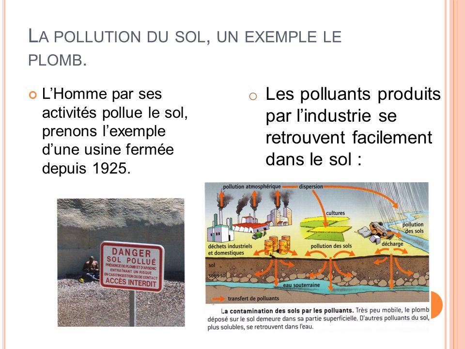L A POLLUTION DU SOL, UN EXEMPLE LE PLOMB. LHomme par ses activités pollue le sol, prenons lexemple dune usine fermée depuis 1925. o Les polluants pro