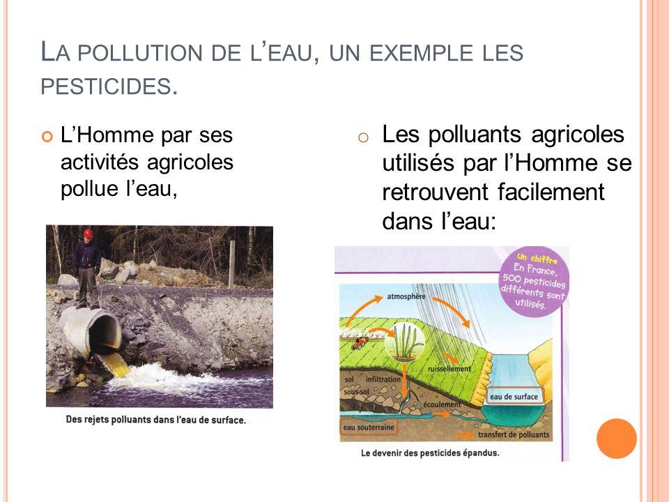 L A POLLUTION DE L EAU, UN EXEMPLE LES PESTICIDES. LHomme par ses activités agricoles pollue leau, o Les polluants agricoles utilisés par lHomme se re