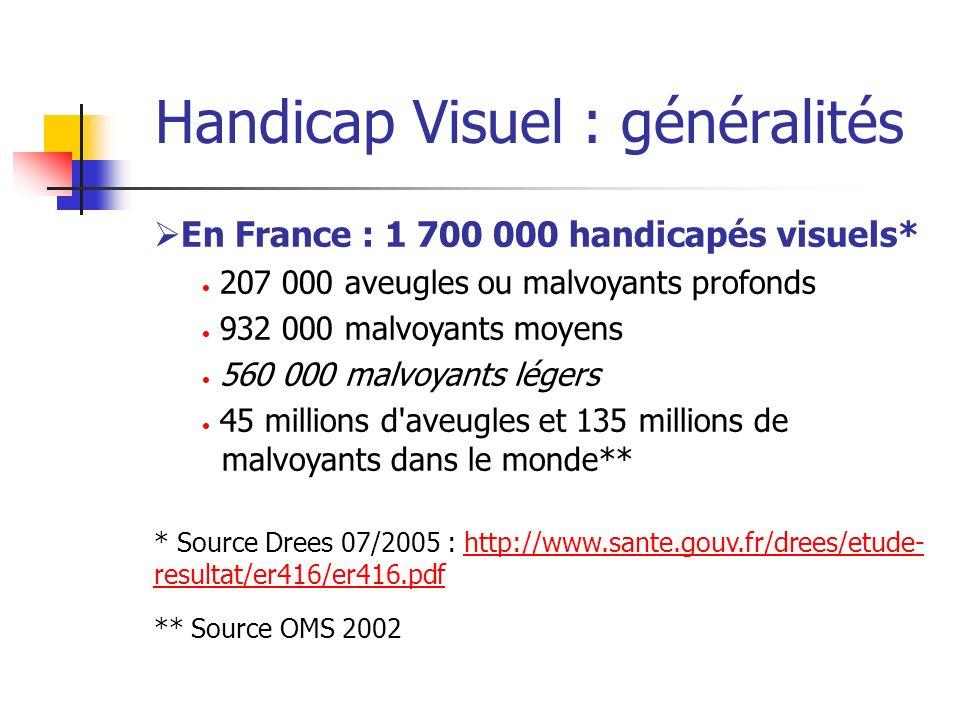 Handicap Visuel : généralités En France : 1 700 000 handicapés visuels* 207 000 aveugles ou malvoyants profonds 932 000 malvoyants moyens 560 000 malv