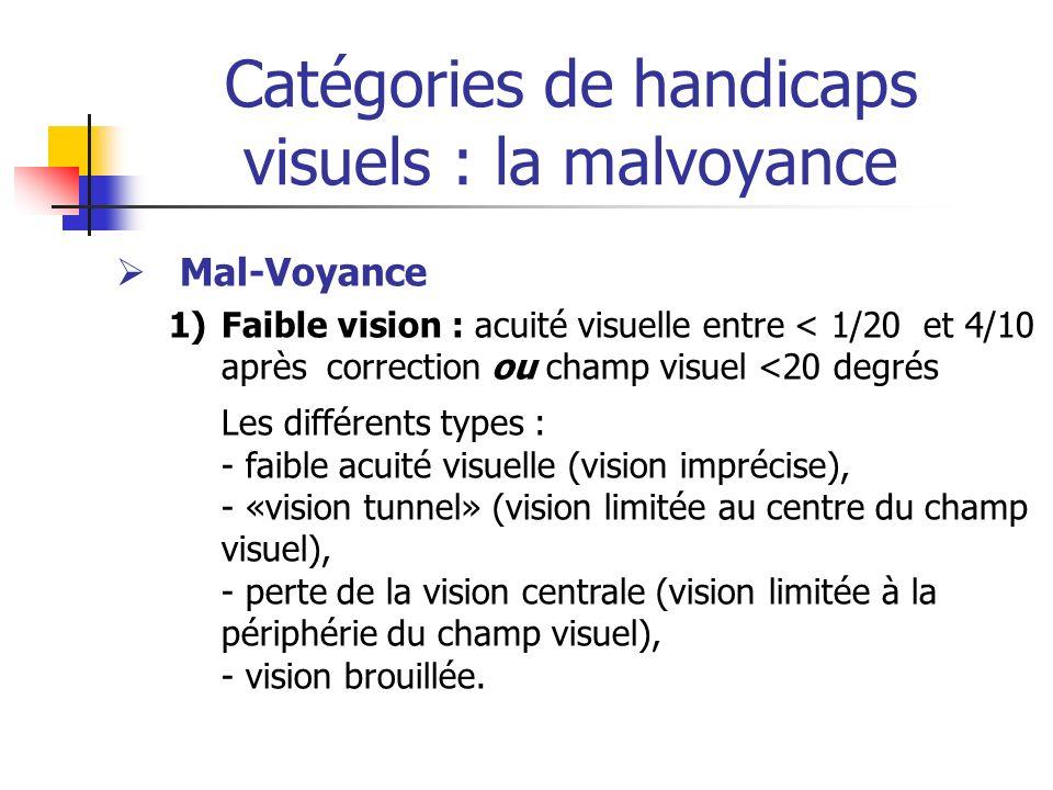 Catégories de handicaps visuels : la malvoyance Mal-Voyance 1)Faible vision : acuité visuelle entre < 1/20 et 4/10 après correction ou champ visuel <2