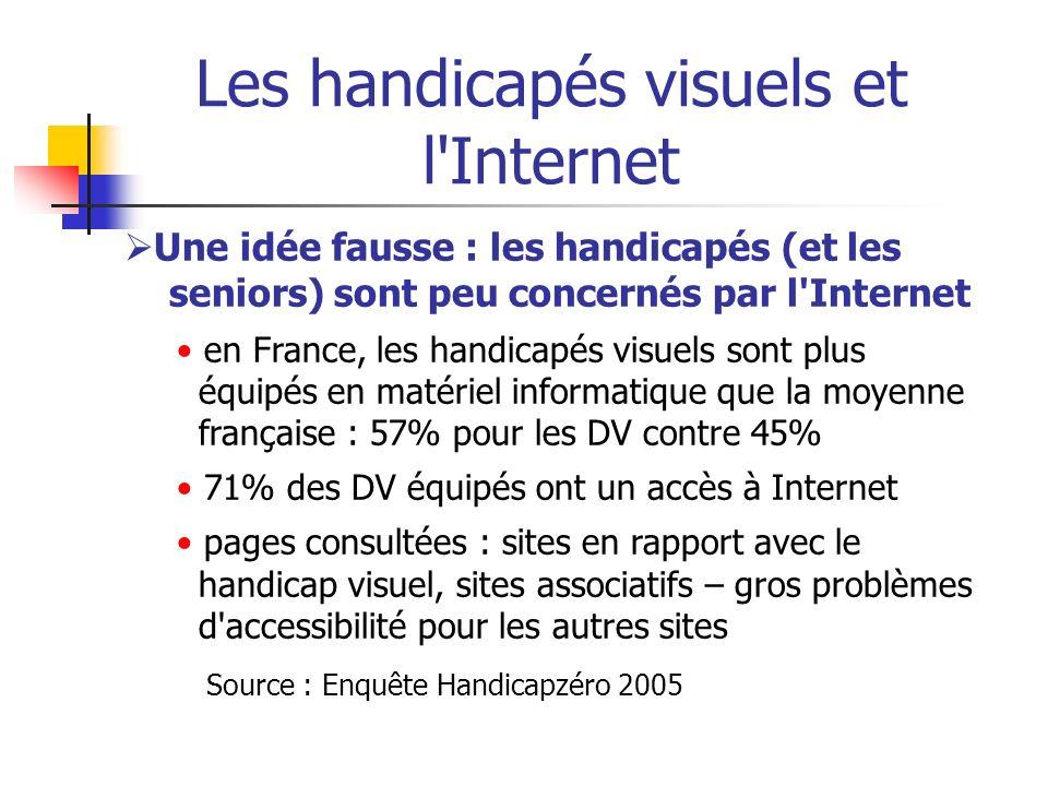 Les handicapés visuels et l'Internet Une idée fausse : les handicapés (et les seniors) sont peu concernés par l'Internet en France, les handicapés vis