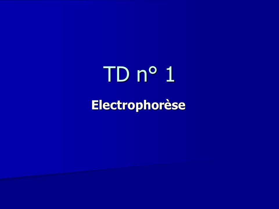 TD n° 1 Electrophorèse