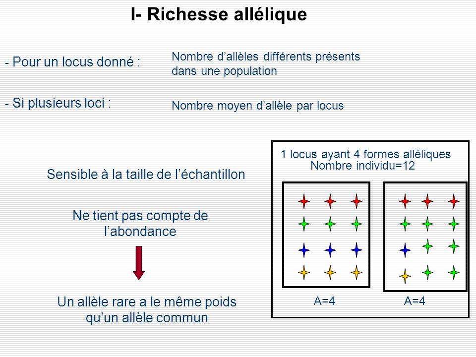I- Richesse allélique A=4 1 locus ayant 4 formes alléliques Nombre individu=12 Ne tient pas compte de labondance Un allèle rare a le même poids quun a