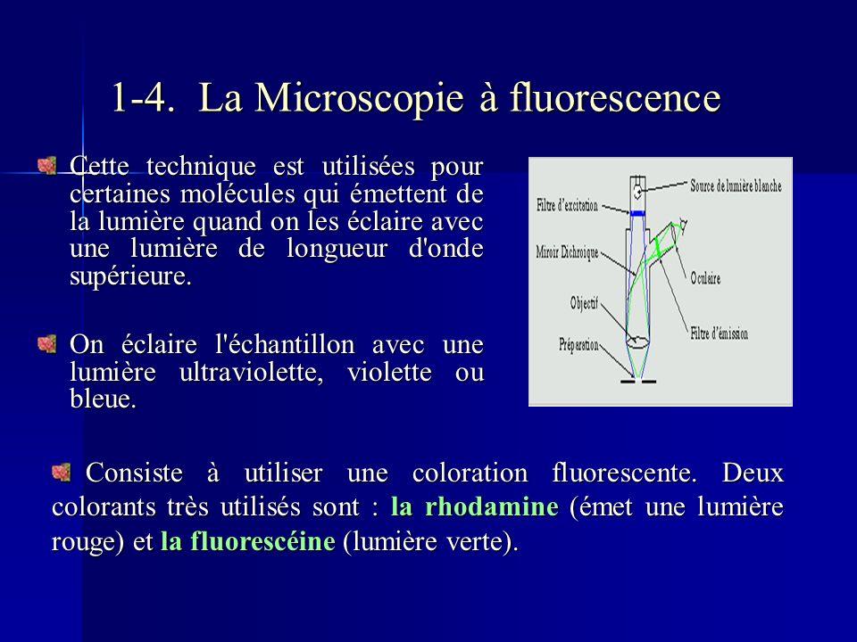 1-4. La Microscopie à fluorescence Cette technique est utilisées pour certaines molécules qui émettent de la lumière quand on les éclaire avec une lum