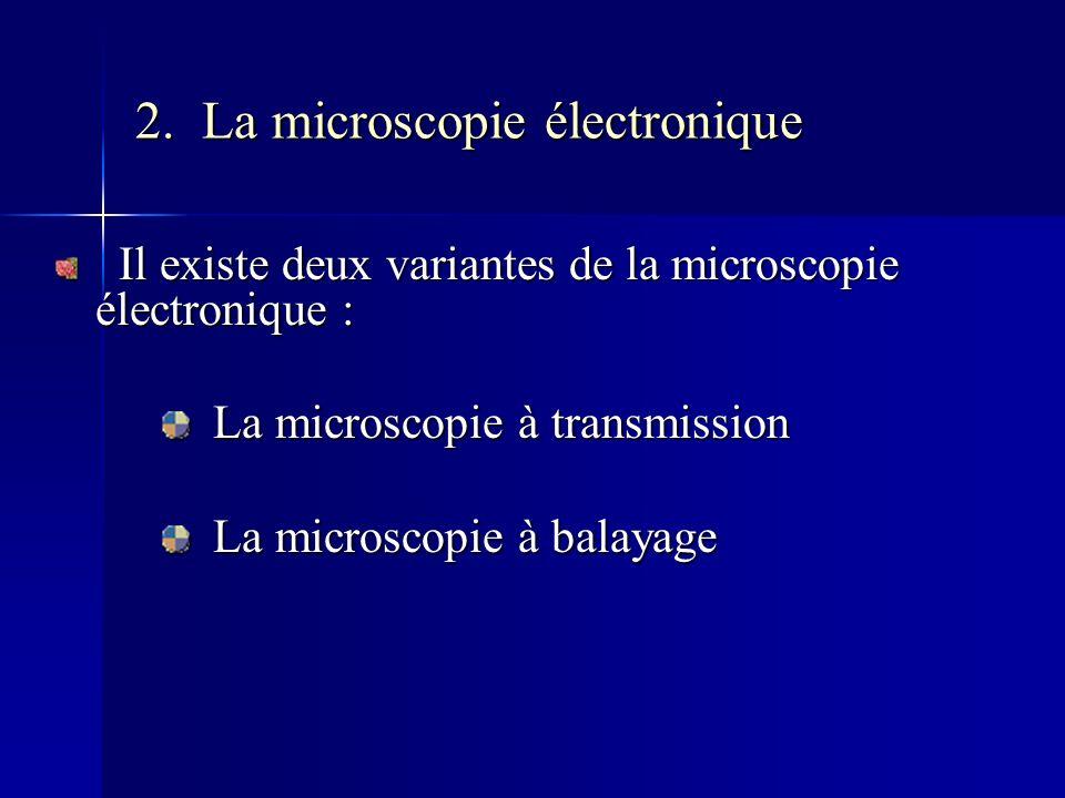 2. La microscopie électronique Il existe deux variantes de la microscopie électronique : Il existe deux variantes de la microscopie électronique : La