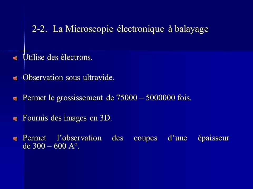 2-2. La Microscopie électronique à balayage Utilise des électrons. Observation sous ultravide. Permet le grossissement de 75000 – 5000000 fois. Fourni