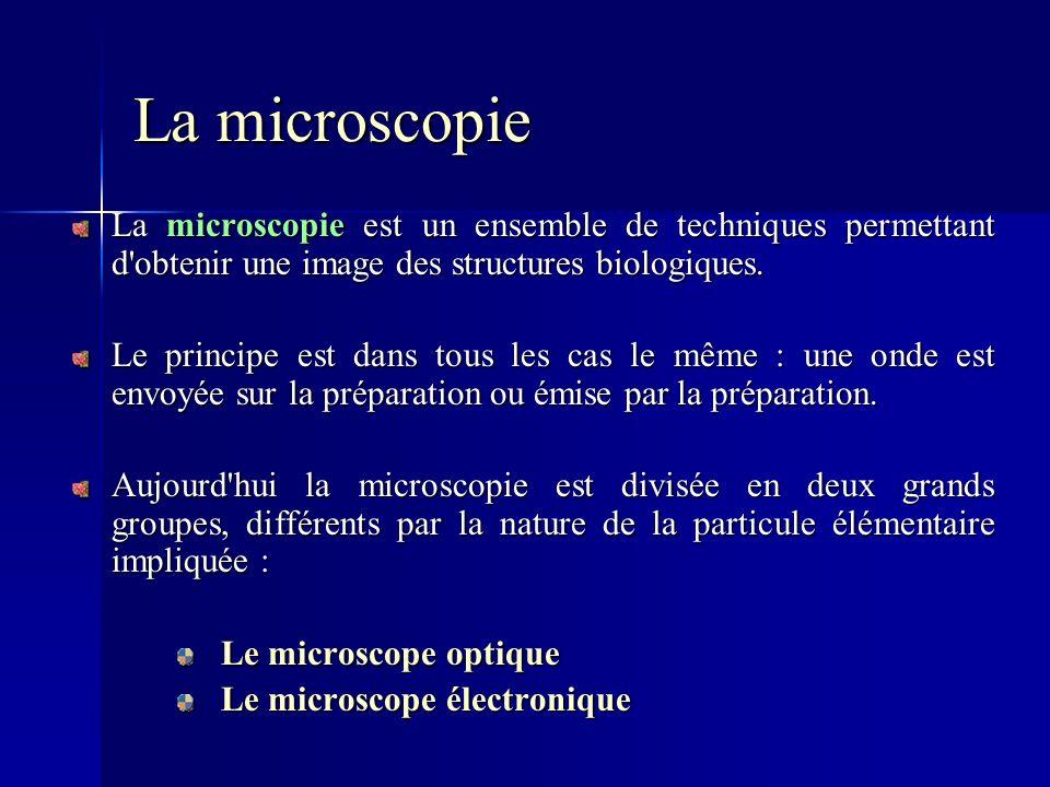 La microscopie La microscopie est un ensemble de techniques permettant d'obtenir une image des structures biologiques. Le principe est dans tous les c