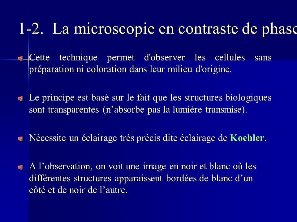 1-2. La microscopie en contraste de phase Cette technique permet d'observer les cellules sans préparation ni coloration dans leur milieu d'origine. Le