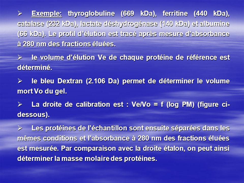 Exemple: thyroglobuline (669 kDa), ferritine (440 kDa), catalase (232 kDa), lactate déshydrogénase (140 kDa) et albumine (66 kDa). Le profil délution