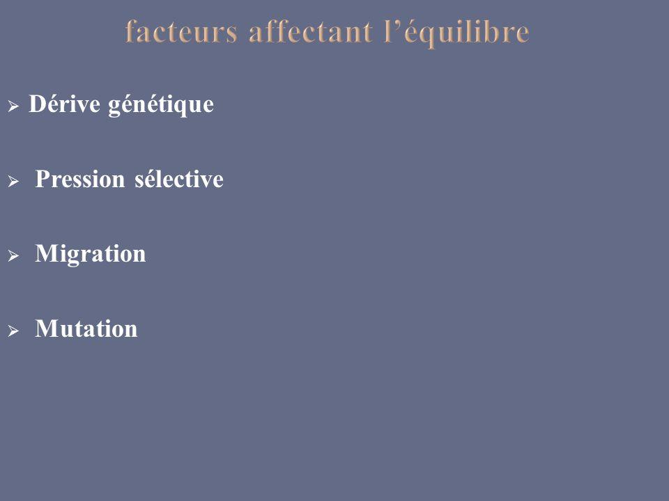 Dérive génétique Pression sélective Migration Mutation