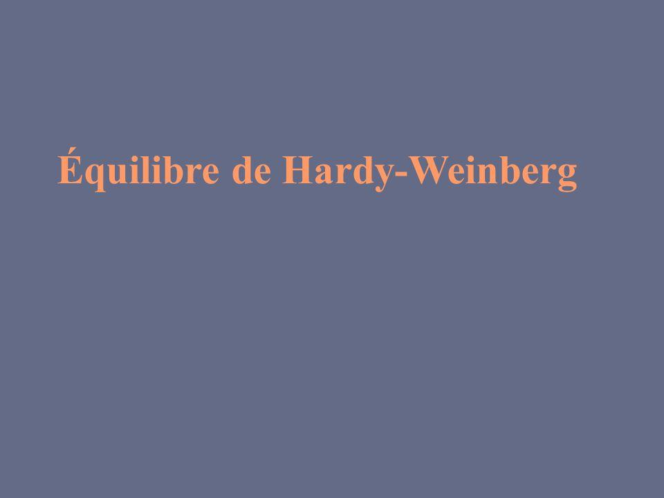 Mis en évidence en 1908 par G.h.Hardy et W.