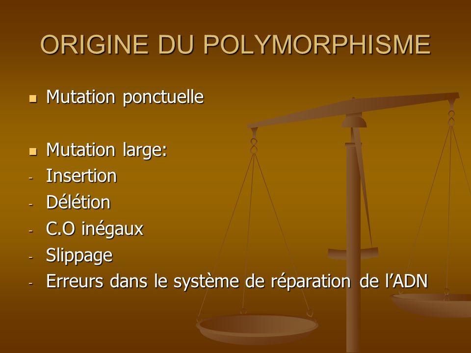 ORIGINE DU POLYMORPHISME Mutation ponctuelle Mutation ponctuelle Mutation large: Mutation large: - Insertion - Délétion - C.O inégaux - Slippage - Err