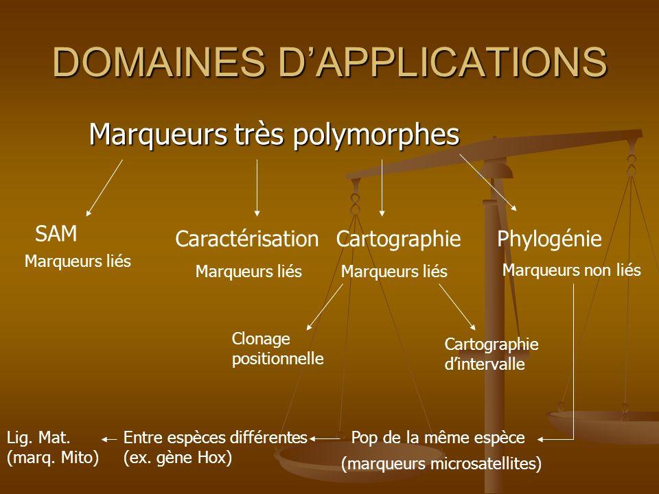 DOMAINES DAPPLICATIONS Marqueurs très polymorphes Marqueurs très polymorphes SAM Marqueurs liés Caractérisation Marqueurs liés Cartographie Marqueurs