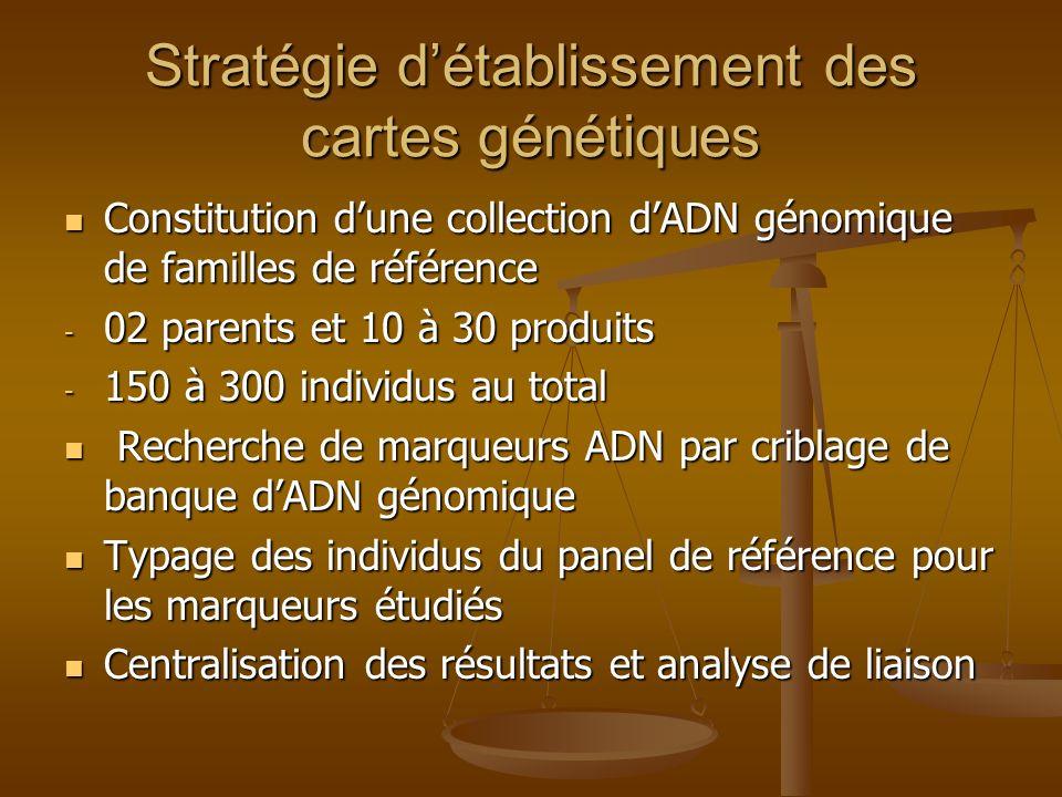 Stratégie détablissement des cartes génétiques Constitution dune collection dADN génomique de familles de référence Constitution dune collection dADN