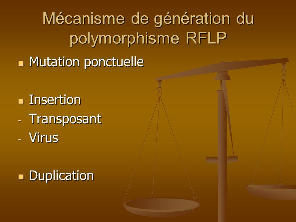 Mécanisme de génération du polymorphisme RFLP Mutation ponctuelle Mutation ponctuelle Insertion Insertion - Transposant - Virus Duplication Duplicatio