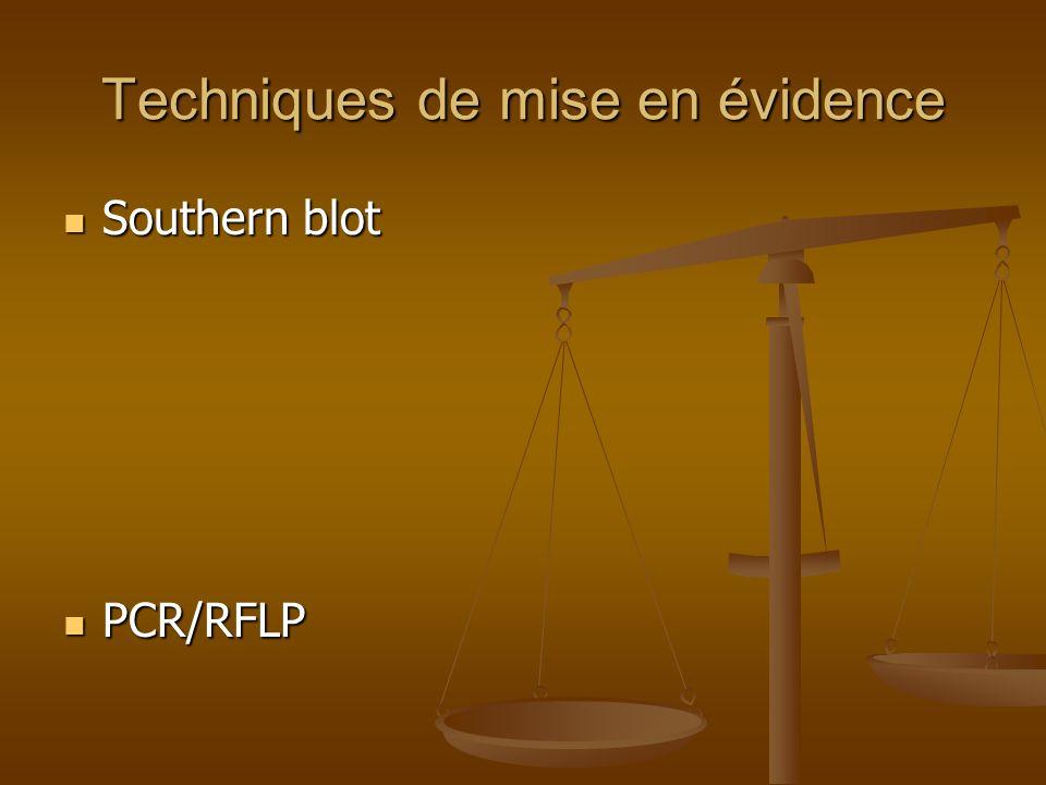 Techniques de mise en évidence Southern blot Southern blot PCR/RFLP PCR/RFLP