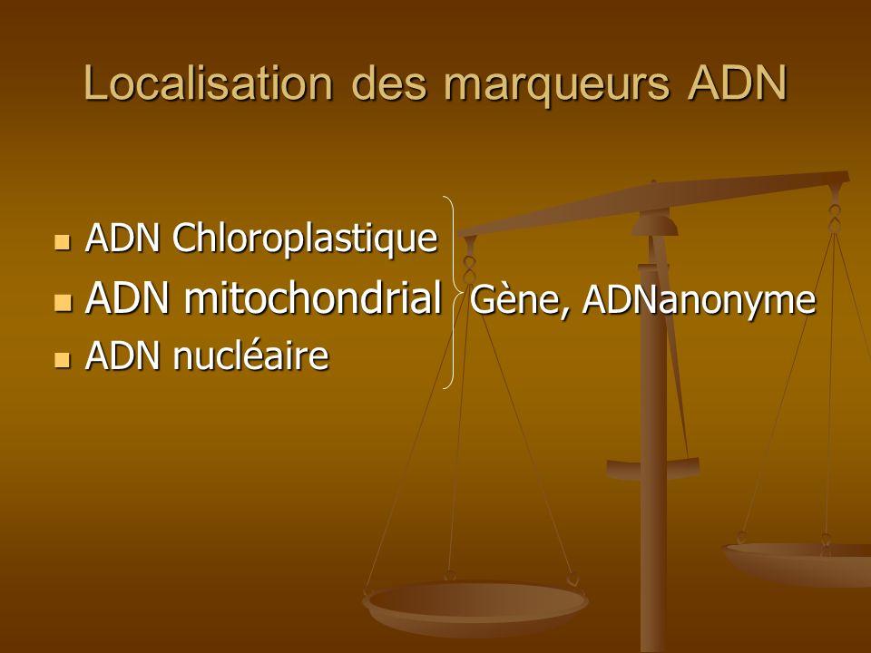 Localisation des marqueurs ADN ADN Chloroplastique ADN Chloroplastique ADN mitochondrial Gène, ADNanonyme ADN mitochondrial Gène, ADNanonyme ADN nuclé